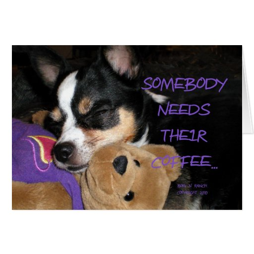 Somebody Needs Coffee Chihuahua Dog Cards