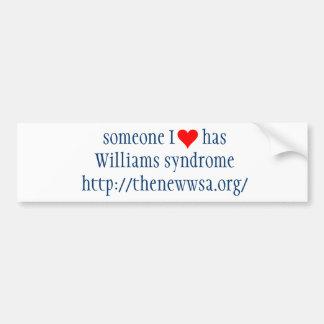 Someone I Love Has WS Bumper Sticker