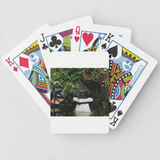 Something Fishy in the Garden Bicycle Playing Cards