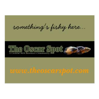 Something's Fishy Here Postcard