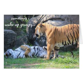 Sometimes i wake up grumpy... funny tiger card
