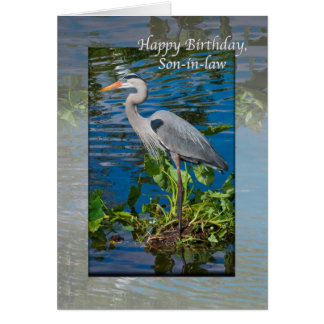 Son-in-law's Birthday Card with Great Blue Heron