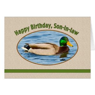 Son-in-law's Birthday Card with Mallard Duck