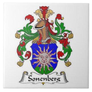 SONENBERG FAMILY CREST ON TILE COAT OF ARMS