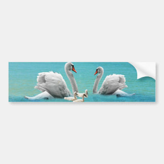 Song Of The White Swan, Bumper Sticker