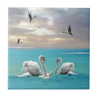 Song Of The White Swan, Tile