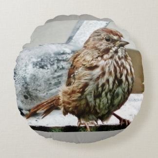 Song Sparrow Fledgling Round Pillow