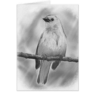 Songbird Card