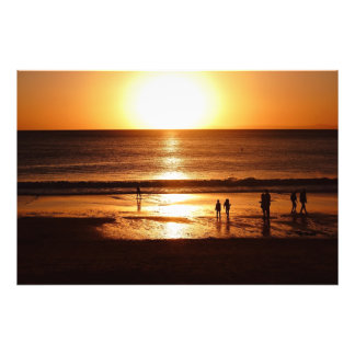 Sonnenanbeter Photo Print