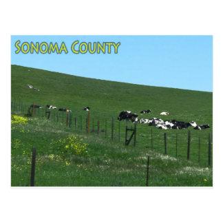 Sonoma County postcard