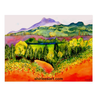 Sonoma County Vineyard Postcard