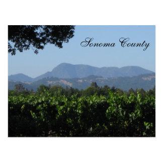 Sonoma Landscape ! Postcard