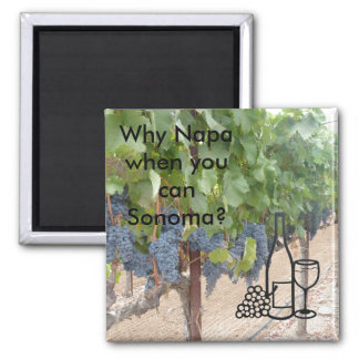 Sonoma Valley wine lovers Magnet