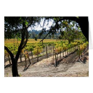 Sonoma Vineyard Card