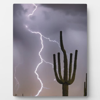 Sonoran Desert Monsoon Storming Plaque