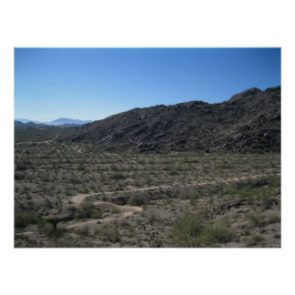Sonoran Desert Print