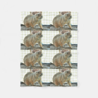 Sonoran Gopher Fleece Blanket