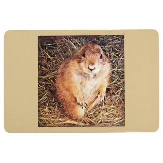 Sonoran Gopher Floor Mat