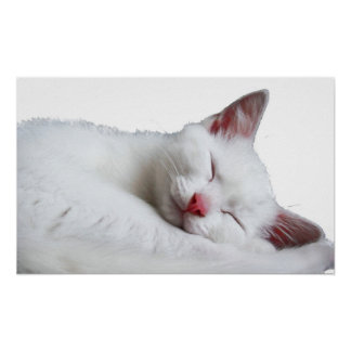 sooooooooooooooo sleepy poster