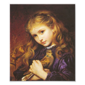 Sophie Anderson The Turtle Dove Print Photo Print