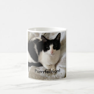 "Sophisticated coffee-drinking cat: ""Purrrfection!"" Coffee Mug"