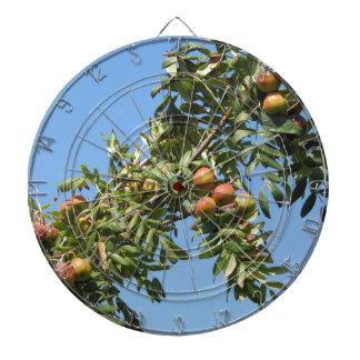 Sorbs in fruit tree . Tuscany, Italy Dart Boards