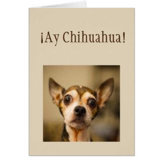 Sorry  ¡Ay Chihuahua! Fun Chihuahua Dog Card