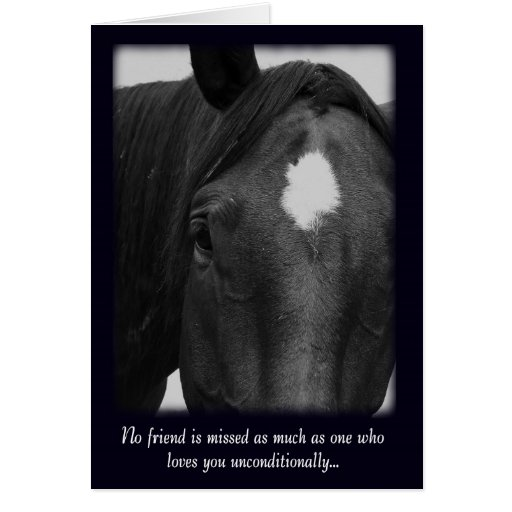 Sorry for the Loss of Your Horse Sympathy Card