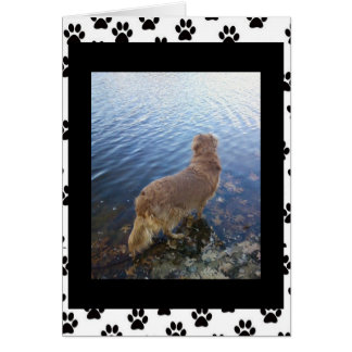 Sorry for your loss.. (dog)(2) card