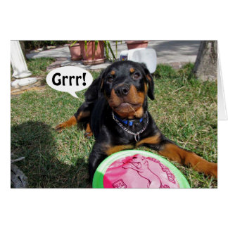 Sorry Rottweiler Puppy Card