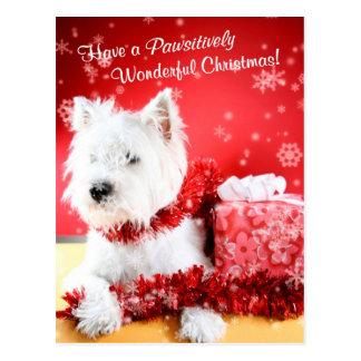 Souhaits de Noël de Terrier blanc de montagne occi Carte Postale