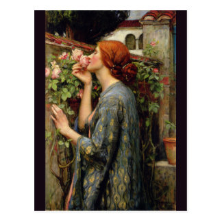 Soul of the Rose by John William Waterhouse Postcard