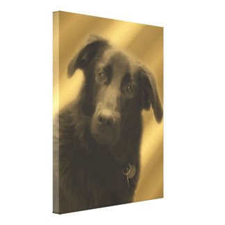Soulful Wise Dog Eyes Animal Canvas Print