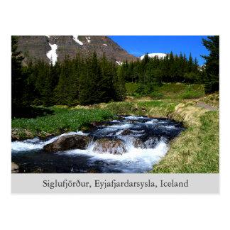 Sounds of Nature postcard