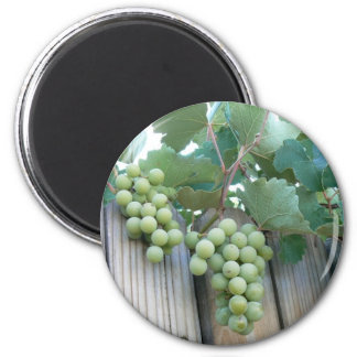 Sour Grapes? 2 Inch Round Magnet