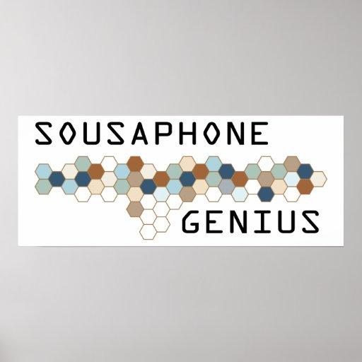Sousaphone Genius Poster