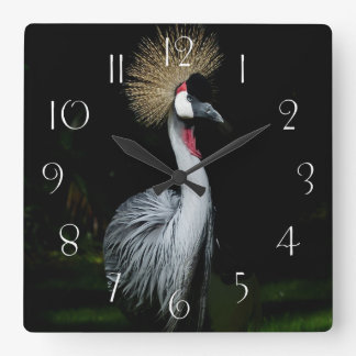 South africa grey crowned crane square wall clock