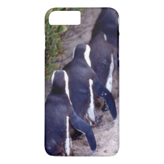 South Africa, Simons Town. Follow the leader. iPhone 7 Plus Case