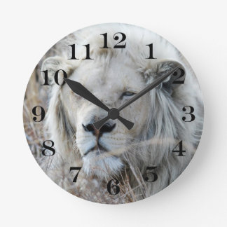 South Africa White Lion resting Round Clock