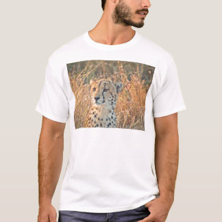 South African Cheetah searches for food T-Shirt