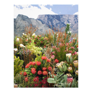 South African floral display of wildflowers Letterhead Design