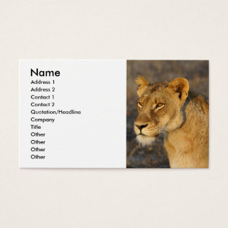 South African Lion Business Card
