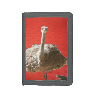 South African Ostrich Wallet