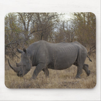 South African Rhinoceros Mouse Pad