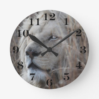 South African White Lion close up Round Clock