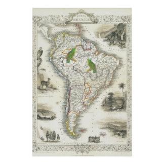 South America Map with Parrots Poster