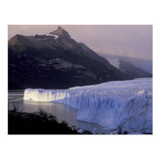 South America, Patagonia, Argentina Parque Postcard