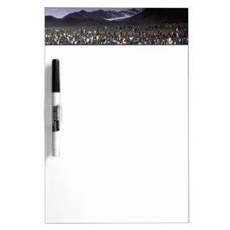 South America, South Georgia Island, King Dry-Erase Whiteboard