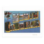 South Carolina - Large Letter Scenes Postcard