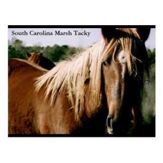 South Carolina Marsh Tacky Postcard